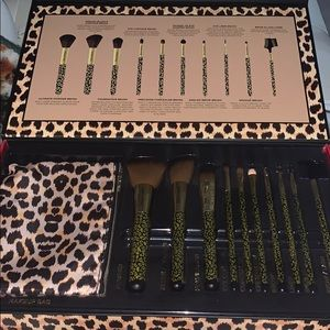 10 professional cosmetic brushes and makeup bag